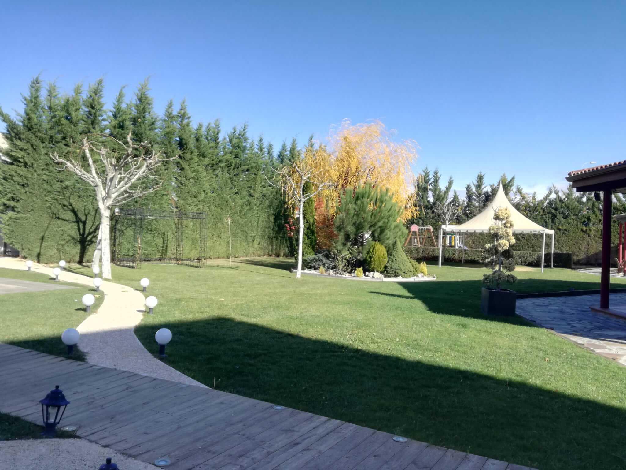 Diseño de jardín bonito